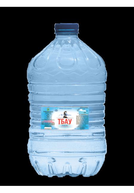 Минеральная вода Тбау 5л