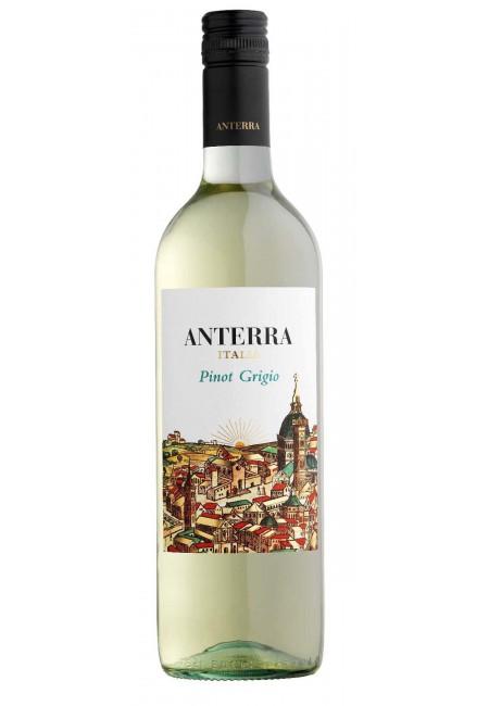 Вино Anterra Pinot Grigio delle Venezie IGT 2016